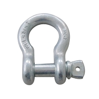 Recovery Shackle - Screw Pin 3/4
